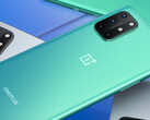 Le OnePlus 8T. (Source : OnePlus)